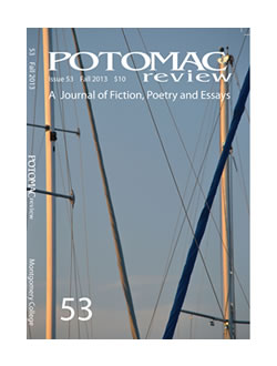 "1st Place, Potomac Review's 2013 Flash Fiction Award for ""Mr. Dow's Story"""